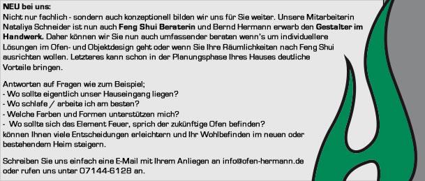 Kaminbauer Stuttgart ofenbau hermann
